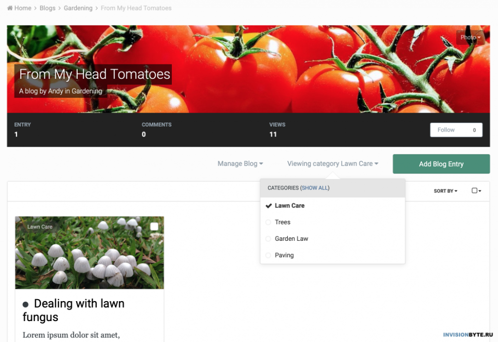 FromMyHeadTomatoes-InvisionCommunity.png